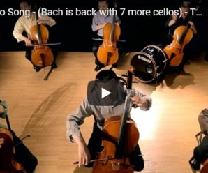 大提琴音樂介紹:巴哈 第一號無伴奏大提琴組曲
